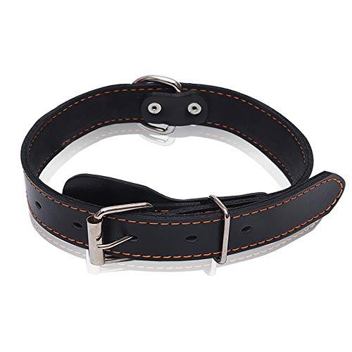 Collar de piel auténtica para perros, ideal para perros pequeños, medianos, grandes, extra grandes (M, negro).