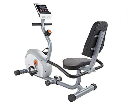V-Fit G-RC Recumbent Magnetic Cycle - Bicicletas estáticas (Interior, magnético), Color Silver-Grey and Green