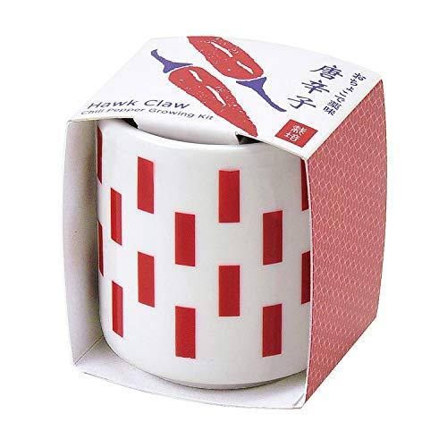 聖新陶芸 おちょこで薬味栽培セット 唐辛子 サイズ:約φ4.3 H4.8 GD-89002
