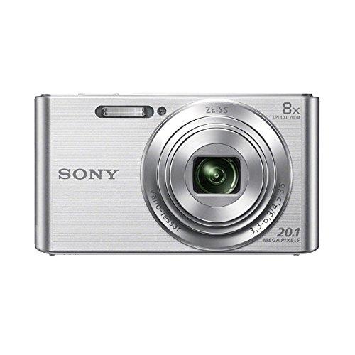 Sony DSC-W830  20,1 Megapixel Bild