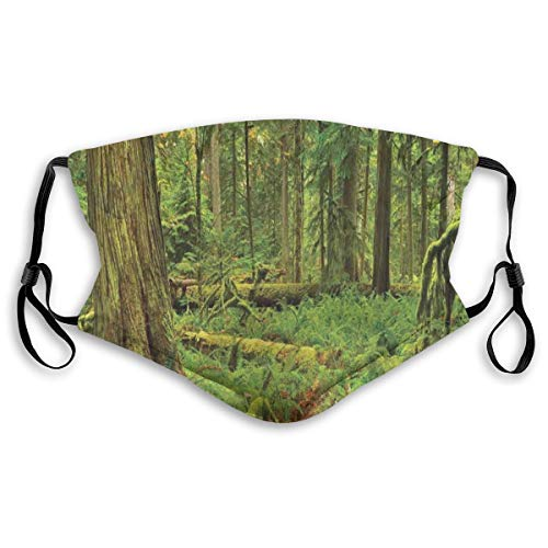 Idyllic Lush Rainforest in Canadian IJsland met verrekijkbare moss On Tree Nature Foto, Mouth Cover Replaceable Wasbare anti-dust Face Cover-verstelbaar, volwassen maat: M