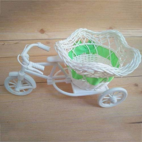 Modern rotan driewieler fietsmand tuin bruiloft feest kantoor tafelvaas familiedecoratie slaapkamer vaas bloemendecoratie gereedschap 2