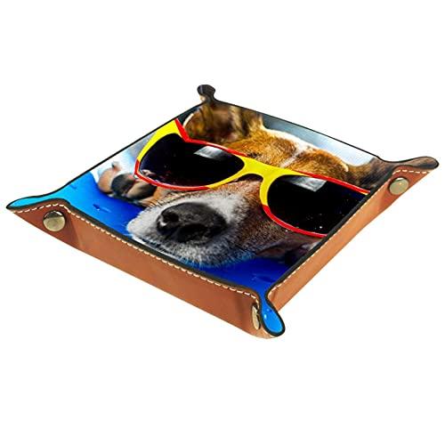 Organizador de escritorio de la bandeja del colector de la bandeja del valet para las mujeres de los hombres Bandeja de la llave para la moneda de la mesa perro fresco con gafas de sol for Office home