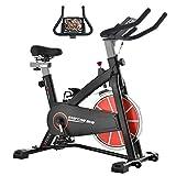 Syrinx エアロバイク 静音 スピンバイク 16kgホイール フィットネスバイク 負荷無段階調整 室内エクササイズバイク 本格トレーニング 移動キャスター付き ワイドサドル&ハンドル調節可能