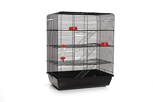 Beeztees Remy Cage pour Rat Noir