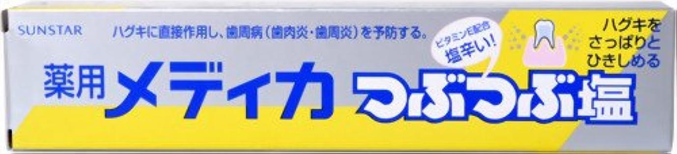 わずかな脊椎エンティティ薬用 メディカつぶつぶ塩 170G
