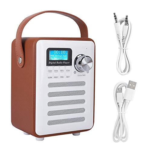 Altoparlante Radio Bluetooth, Mini Altoparlante Wireless Bluetooth Portatile Dab/Dab + FM Radio Internet Digitale