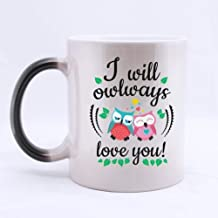 Cute Owl Couple I will owlways love you! Heat Color Changing Mug Morphing Coffee Cup Ceramic 11 Oz Twin Sides Design