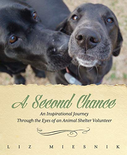 A Second Chance: An Inspirational Journey through the Eyes of an Animal Shelter Volunteer