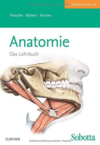 Sobotta Lehrbuch Anatomie: Mit StudentConsult-Zugang