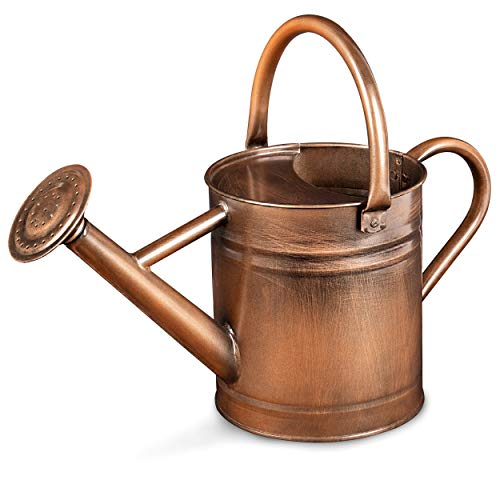 Homarden Half Gallon Copper Colored Metal Indoor Outdoor Plant Watering Can for House Plants with Removable Spout, 80oz