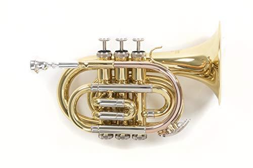 Roy Benson Rb701020 Tromba Pocket in Sib Pt-302, Finitura Laccata, Astuccio Rettangolare