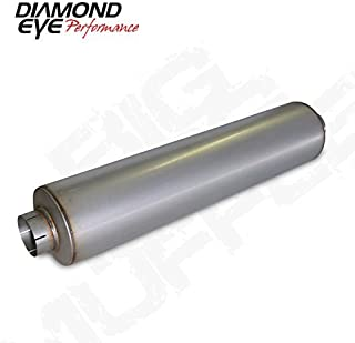 Best the dog and muffler Reviews