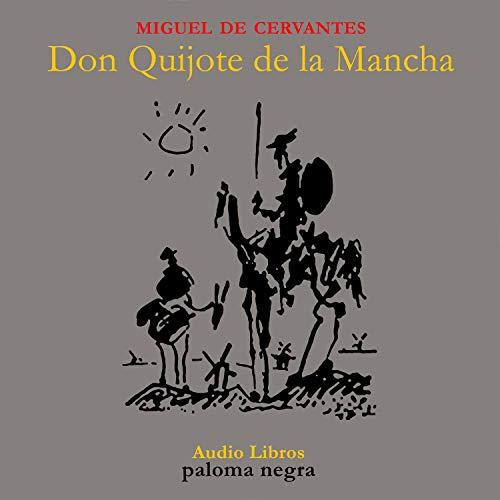 Couverture de Don Quijote de la Mancha