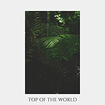 Top of the World (feat. Engla Hoelstad)