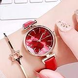 Reloj de pulsera para mujer, reloj de mujer, reloj de mujer, correa de piel, resistente al agua, movimiento de cuarzo (color D: D)