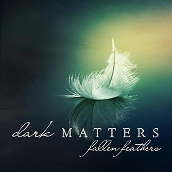 Fallen Feathers (Dark Matters)