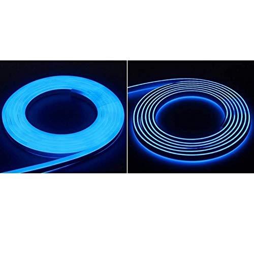 ACHKL 110V 220V Kitchen Light 1m ~ 100m Waterproof LED Cabinet Light Cabinet Soft Light Strip Living Room Home Lighting with Power Supply (Color : Blue, Size : 100M)