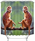 Cortina de Ducha privada Monkey Companion Tree Branch Wildlife, Cortina de Ducha Decorativa, Impermeable y fácil de Quitar 180X180Cm