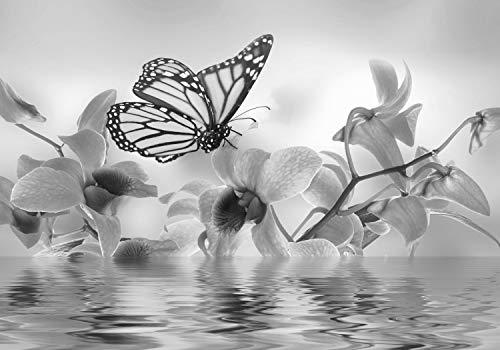 wandmotiv24 Fototapete Grau Orchidee XL 350 x 245 cm - 7 Teile Fototapeten, Wandbild, Motivtapeten, Vlies-Tapeten Blumen, Wasser, Schmetterling M3742