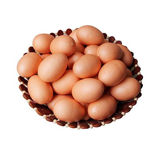 Lorigun 10pcs Artificial Egg Fake Food Faux Kitchen Decor Theatre Prop