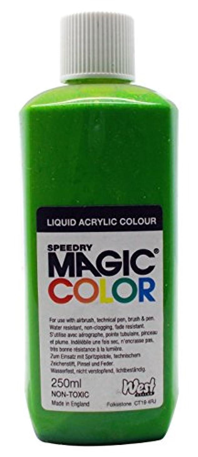 Magic Color 250ml Asian Lime, Acrylic 5 x 5 x 14 cm
