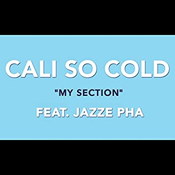 My Section (feat. Jazze Pha)