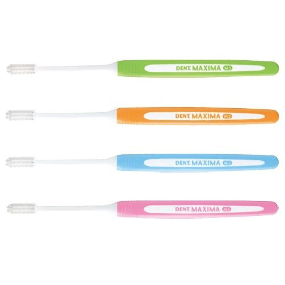 辛いバトルジムマキシマ 歯ブラシ DENT.MAXIMA 4本 アソート (ミディアムソフト(MS))