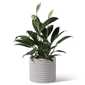 Silk Flower Arrangements POTEY 055104 Planter Pots Indoor - 6.1 Inches Ceramic Vintage-Style Hobnail Textured Flower Planter Pots with Drainage Hole for Indoor Plants Flower Succulent Modern Home Decor(Plants NOT Included)