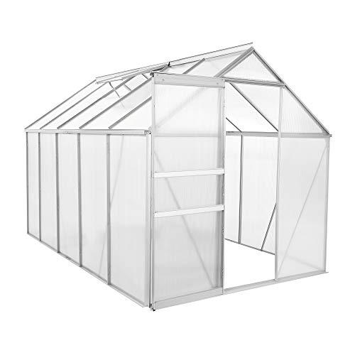 Zelsius Aluminium Gewächshaus für den Garten | 310 x 190 cm | 6 mm Platten | Vielseitig nutzbar als Treibhaus, Tomatenhaus, Frühbeet und Pflanzenhaus