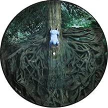 The Widow (Picture Disc)