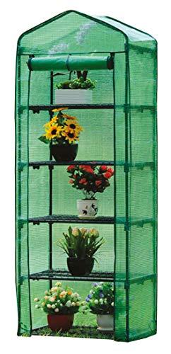 Gewächshaus Klein 200x69x49cm | für optimales Pflanzenwachstum | Mini Gewächshaus mit 5 Etagen | inkl. Gewächshaus folie | Grün Gewächshaus Balkon | Foliengewächshaus Winterfest |