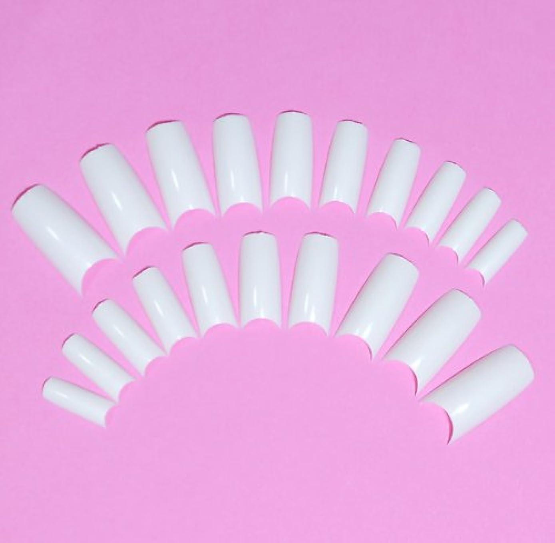 瀬戸際明るくするオークネイルチップ チップオーバーレイ用 20枚入 フレンチホワイト スカルプチャー つけ爪付け爪