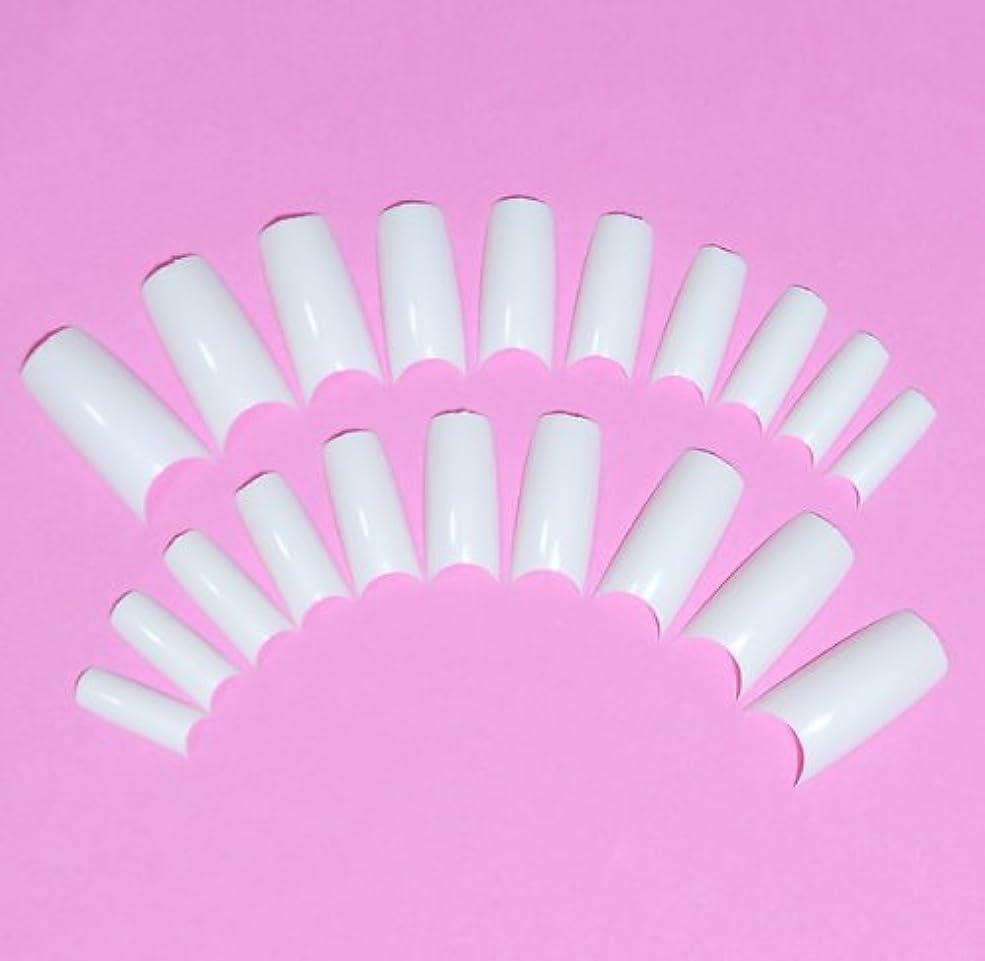 成長する動脈東方ネイルチップ チップオーバーレイ用 20枚入 フレンチホワイト スカルプチャー つけ爪付け爪