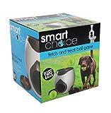SmartChoice - Juguete Interactivo de Entrenamiento para Perro, Juguete...
