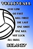 Volleyball Stay Low Go Fast Kill First Die Last One Shot One Kill Not Luck All Skill Delaney: College Ruled | Composition Book | Blue and White School Colors