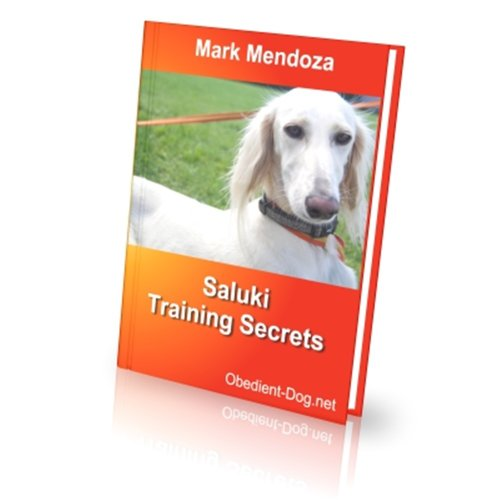 Saluki Training Secrets (English Edition) PDF Books