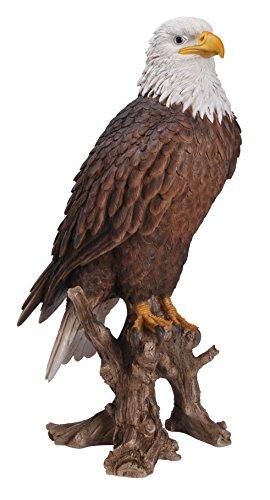 Vivid Arts American Bald Eagle Resin Ornament