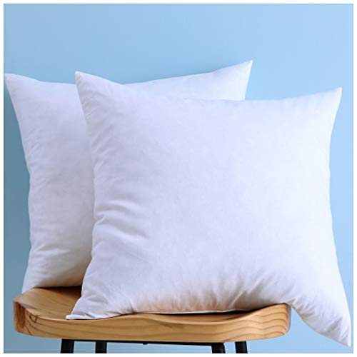 LunarTex Two Pillow Inserts, Down and Feather Throw Pillow Insert, Cotton Fabric, 20X20 Inches