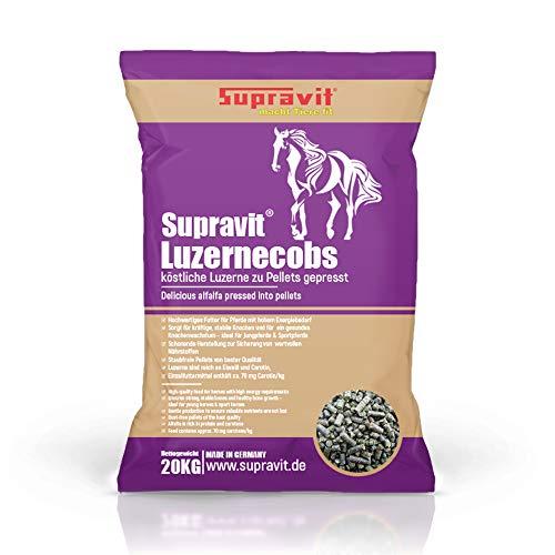 Supravit Luzernecobs 20 kg - energiereiches Pferdefutter, Luzernepellets mit Hohem Anteil an Carotin