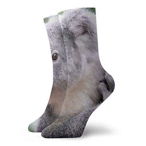 Koala On Branch Calcetines cortos para adultos Algodn Lindo Clsico Ocio Deporte Calcetines cortos Adecuado para hombres Mujeres Calcetines deportivos Calcetines cmodos y transpirables Casuales 30cm