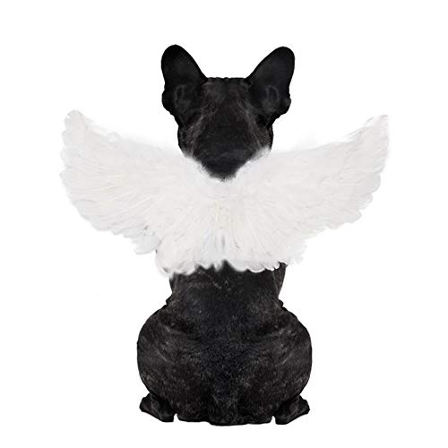 WeeH Pet Halloween Costume Cosplay Angel Devil Black White Wing for Dog Cat Rabbit Piggy - Funny...