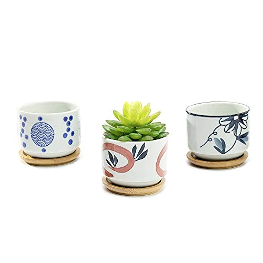 Nattol Small Flower Pots, Assorted Mini 3 Inch Ceramic Succulent Planter Pots with Bamboo Saucers, Set of 3