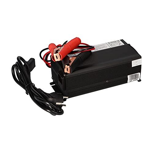 WSB Cargador para baterías y baterías LiFePO4 (12 V, 20 A)