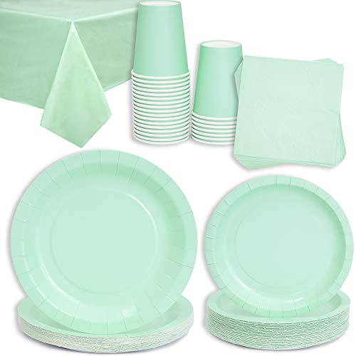 Mint Green Party Bundle, Includes Table Cloth, Cups, Napkins, Dinner and Appetizer Plates (Serves 24, 96 Pieces)