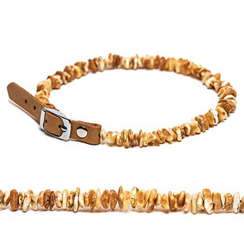 Amber Neck Bernsteinkette für Hunde und Katzen mit Lederschließe Family