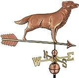 L.J.JZDY Veleta Herramientas de medición Profesionales Golden Retriever Perro Veleta con Flecha de Cobre Puro