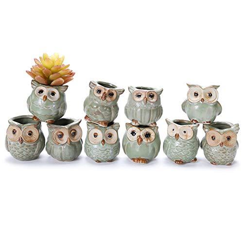 lzndeal 5pcs Pot de Fleur en céramique Forme de Hibou Contenant des Plantes succulentes pour la décoration de la Maison de Jardin