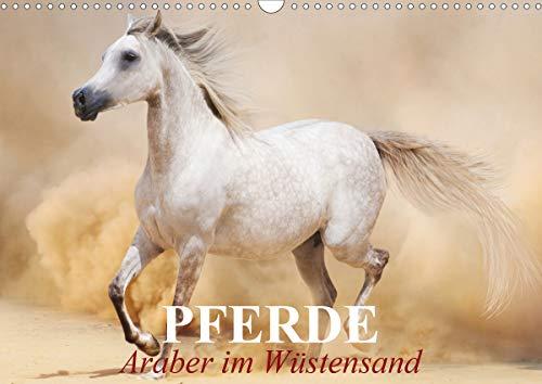 Pferde • Araber im Wüstensand (Wandkalender 2021 DIN A3 quer)