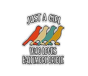 Sticker Just A Girl Who Loves Baltimore Oriole Bird 3 ×4  Decals for Laptop Window Car Bumper Helmet Water Bottle  3 PCs/Pack